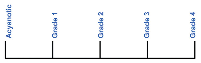 Figure 1: The visual analog scale of cyanosis severity